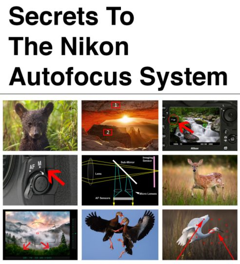 Secrets to the Nikon Autofocus System